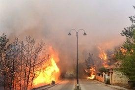 لبنان: غابات مهملة وخطر الحرائق لم ينتهِ بعد!