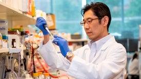 """دراسة تكشف النقاب عن """"النظام الغذائي"""" للسرطان"""