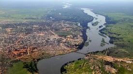 الكائنات الحية بالمياه العذبة تواجه تهديدًا بالغا .. و«الحفظ العرضي» طوق النجاة