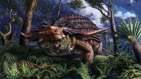 قصة الوجبة الأخيرة لـ«الديناصور المدرّع»
