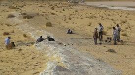الإنسان الأول هاجر إلى السعودية قبل 85 ألف سنة