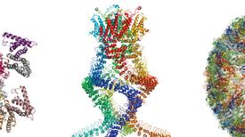 جائزة نوبل في الكيمياء تكلل أبحاث تصوير البروتينات في أثناء عملها