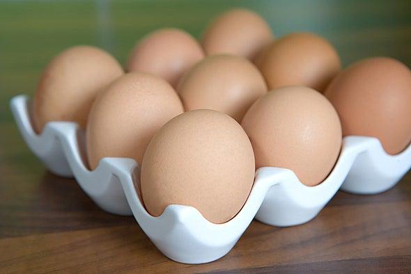 تحذيرات من خطورة الإفراط في تناول البيض