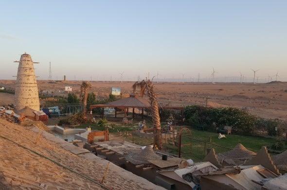 مزارع الرياح تُحدث خللًا في السلسلة الغذائية