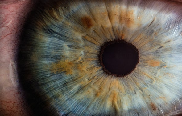 في نشرة العلوم طريقةٌ ثوريةٌ لتجديدِ أعصابِ العينِ التالفة