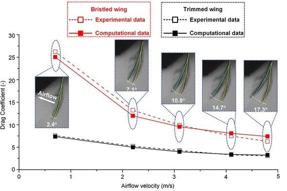 """آلية تحليق الحشرات بـ""""قوة السحب"""" قد تحسِّن تصميمات الروبوتات الطائرة"""