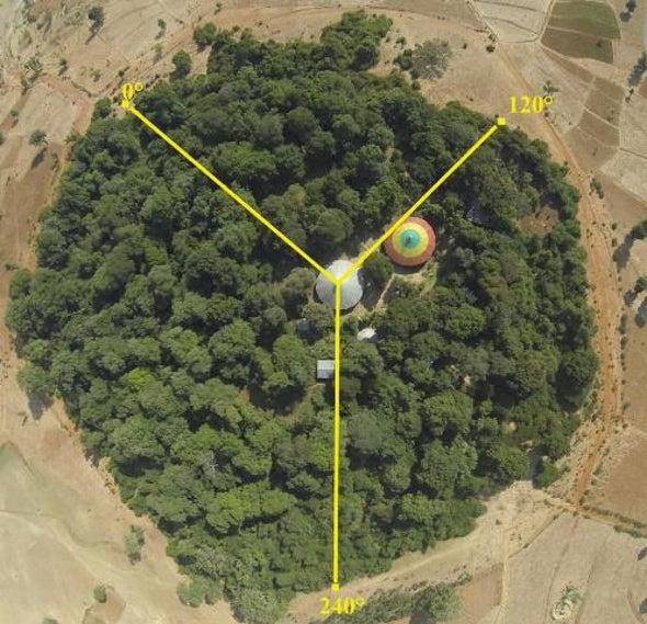 مطالب بحماية الغابات المقدسة في أثيوبيا