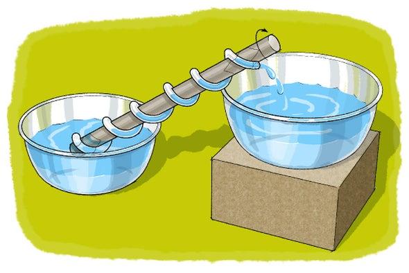 """رفع المياه باستخدام """"شادوف أرخميدس"""""""