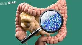 تطوير برنامج إلكتروني للتنبؤ بإصابات سرطان القولون