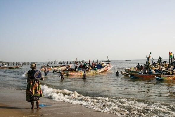 المناخ أثر في الهجرات البشرية خارج إفريقيا طوال 300 ألف عام