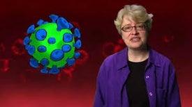 لماذا يصعب القضاء على فيروس نقص المناعة البشرية؟