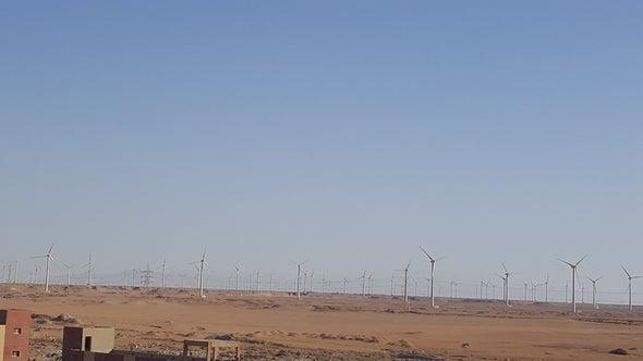 """مزارع الرياح تخسر ملايين الدولارات بسبب """"التكدس"""""""