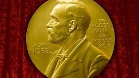 ماراثون «نوبل» ينطلق «الإثنين»