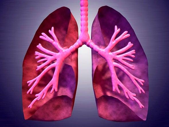فئران تعود للتنفس بعد شلل تنفسي دام عامًا ونصف