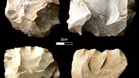 """اكتشافات أثرية بالهند تنفي إفناء ثوران """"توبا"""" للحياة في آسيا"""