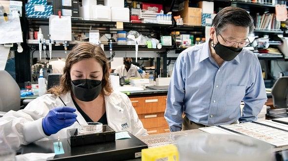 كيف ينتقي ألزهايمر ضحاياه من خلايا الدماغ؟.. علماء يحلّون اللغز