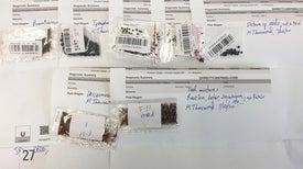 بذور غامضة مُرسَلة عبر البريد تثير مخاوف ذات صلة بالتنوع البيولوجي