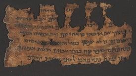 الحمض النووي القديم يطرح أدلة جديدة بشأن مخطوطات البحر الميت