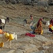 كشف المسار الغامض لوباء الكوليرا في اليمن