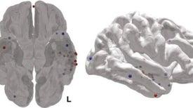 تقنية علاجية جديدة لاستعادة الذاكرة