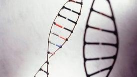 اكتشاف «جين» جديد يسبب التأخر الذهني لدى الأطفال