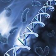 اكتشاف جين جديد يسبب الإصابة بسرطاني الثدي والمبيض