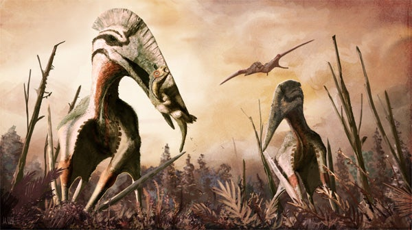 Two giant pterosaurs striding over an ancient grassland hunting small dinosaurs.