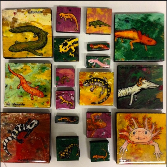 Salamander Paintings