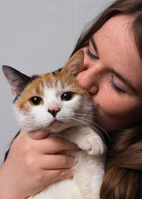 What We Understand about Cats and What They Understand about