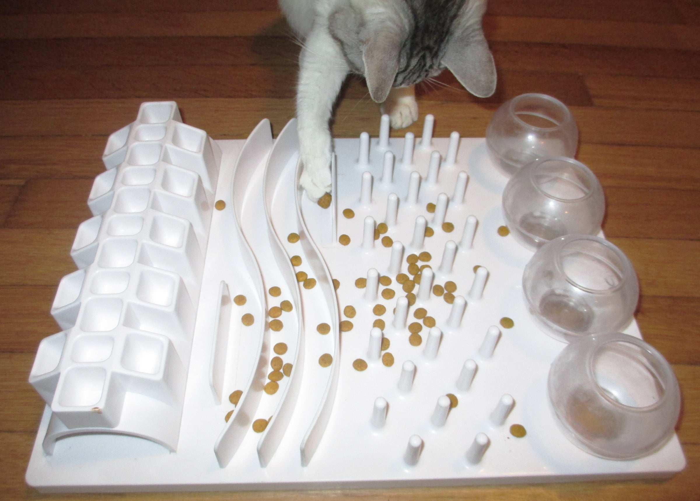 puzzle labyrinth pet futter kitty youtube food cat feeder katze test catit watch maze