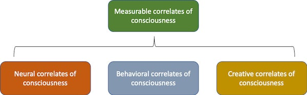 Where's My Consciousness-ometer? - Scientific American Blog