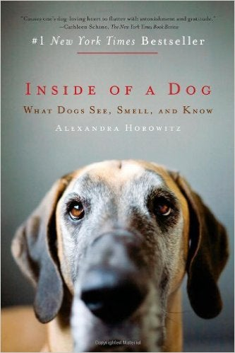 Best Books About Dog Cognition