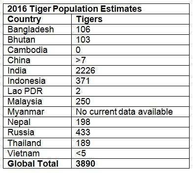 tiger%20population%20table.JPG