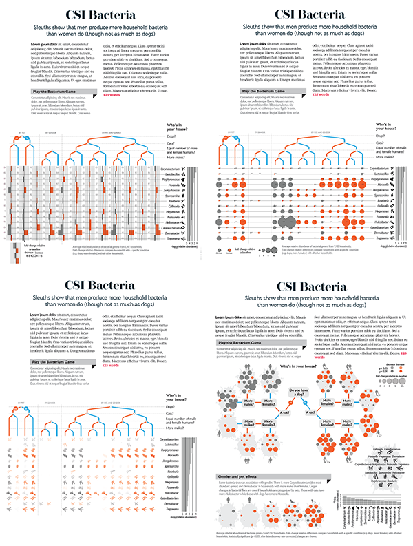 Infographic Ideas best american infographics pdf : The Evolution of a Scientific American Infographic: Secret Life in ...