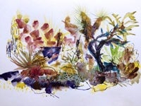 Flourish Exhibit - Contemporary Botanical Art