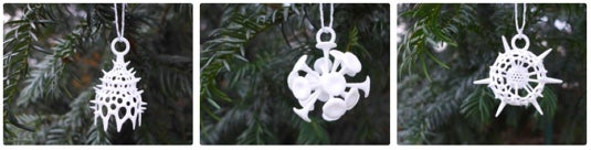 Radiolaria ornaments by Ontogenie