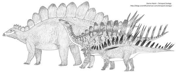 stegosaurs-TetZooBigBook-600-px-tiny-Jul