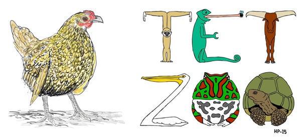 From zero zoologist to hero zoologist?