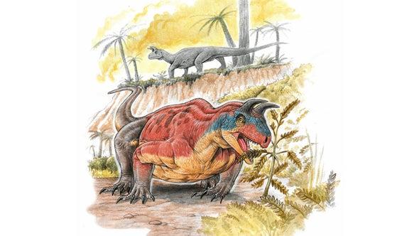 Paleo Profile: The Horned Lizard