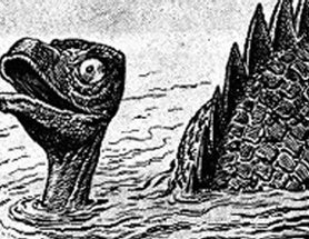 The Soay Island Sea Monster of 1959