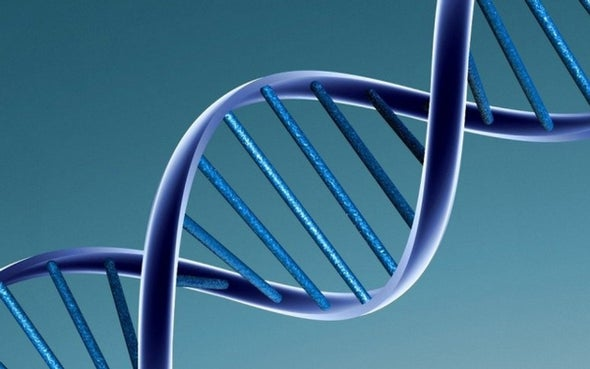 Why We Should Finish the Human Genome