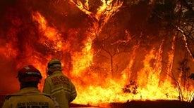 January 2020: Earth's Warmest January on Record