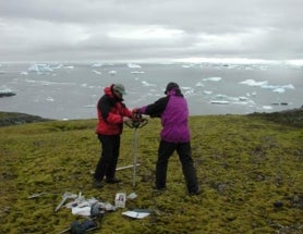 Defrosted Moss Sprouts Anew After 1,500 years in Antarctic Permafrost
