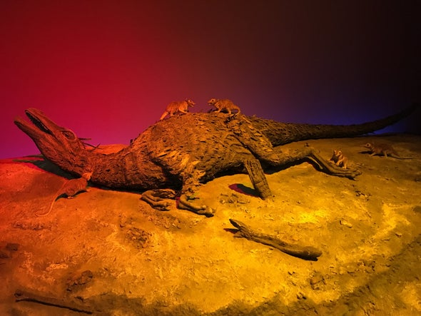 Dinosaurs Didn't Die from Cretaceous Cramps