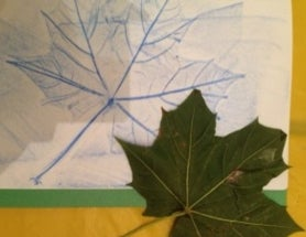Urban Science Adventure: Make Autumn Leaf Lanterns