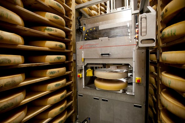I Am a Roboticist in a Cheese Factory
