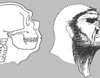A Review of <i>Neanderthal: the Strange Saga of the Minnesota Iceman</i>, Part 2