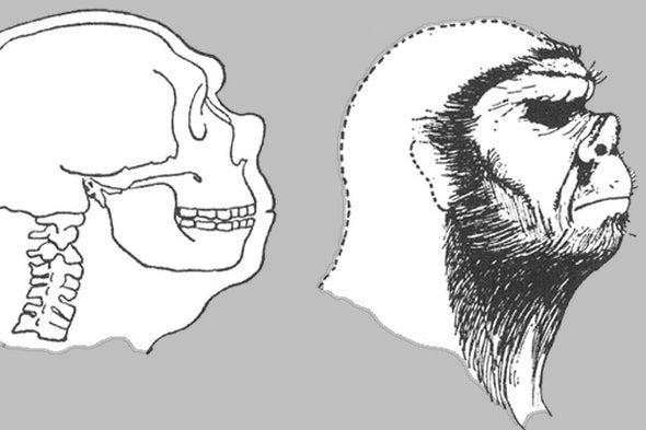A Review of <i>Neanderthal: the Strange Saga of the Minnesota Iceman</i>, Part 2