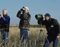 Birdwatchers, Hunters Train Their Scopes on Conservation