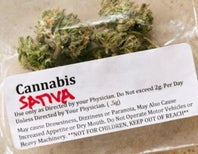Cannabis versus Cancer